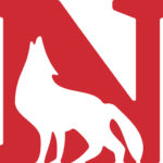 Newberry earns NABC Team Academic Excellence Award